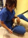 Con la Dott.ssa Adriana, inizia l'anestesia