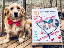 Calendario Amici Degli Animali 2018